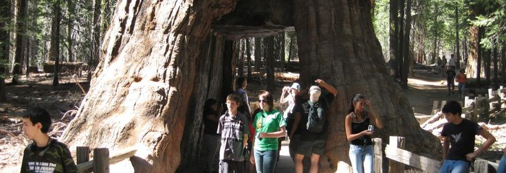 Giant Sequoia National Monument