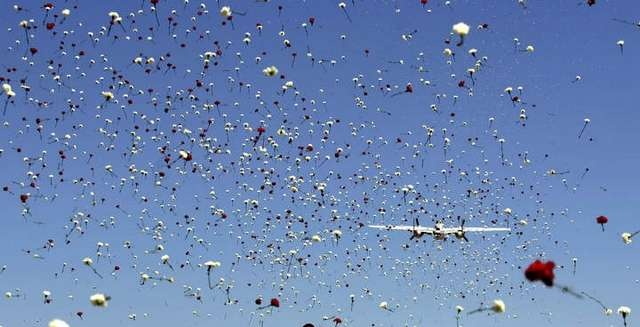 A WWII B-25 bomber dropped thousands of carnations on a crowd of 1500 the Palm Springs Air Museum's annual flower drop to honor veterans for Memorial Day, Monday, May 28, 2012 in Palm Springs. A WWII B-25 bomber dropped 3,000 carnations on a crowd of about 1800.     (Richard Lui The Desert Sun)