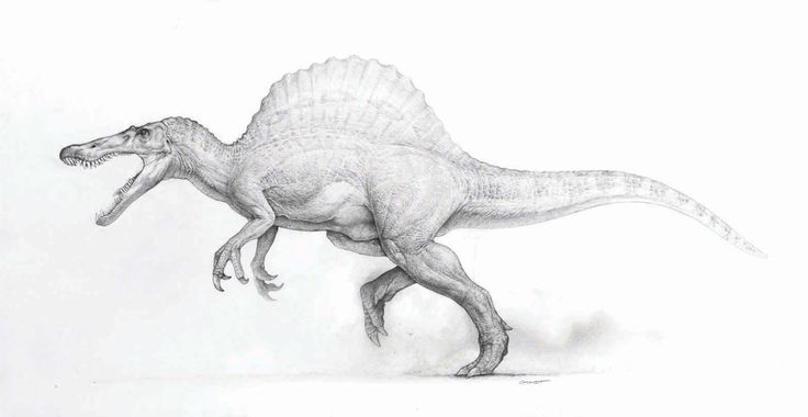 mark crash mccreery concept drawings for jurassic park dinosaurs | ... large collection of images created for the Jurassic Park films