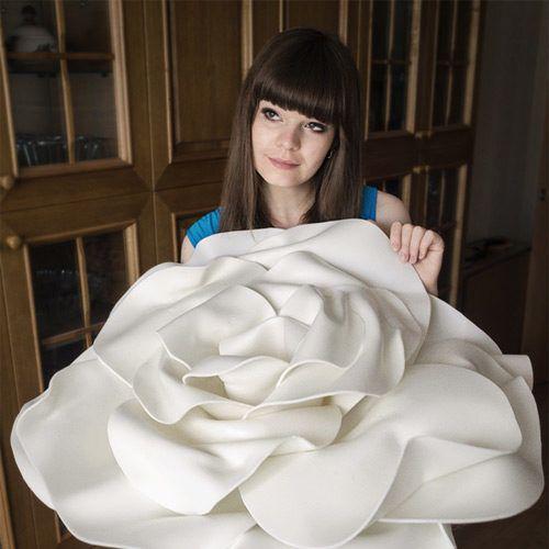 Огромные розы на фото