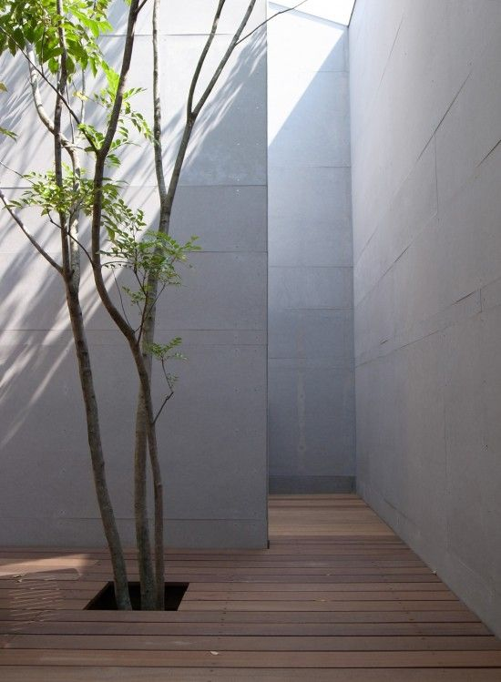 I always like courtyards with small trees. Residence in Onohara by Matsunami Mitsutomo Architect & Associates.