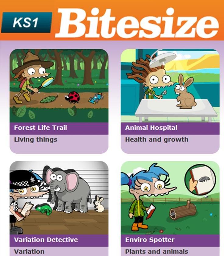30 best BBC Bitesize Ks1 Game images on Pinterest | Fun activities ...