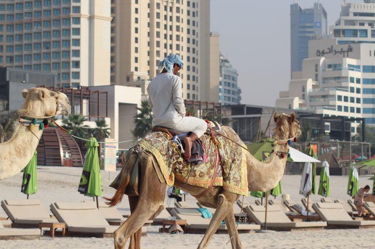 Hier findet ihr Tipps und Ratschläge rund um das Reisen nach Dubai in der heissesten Zeit!
