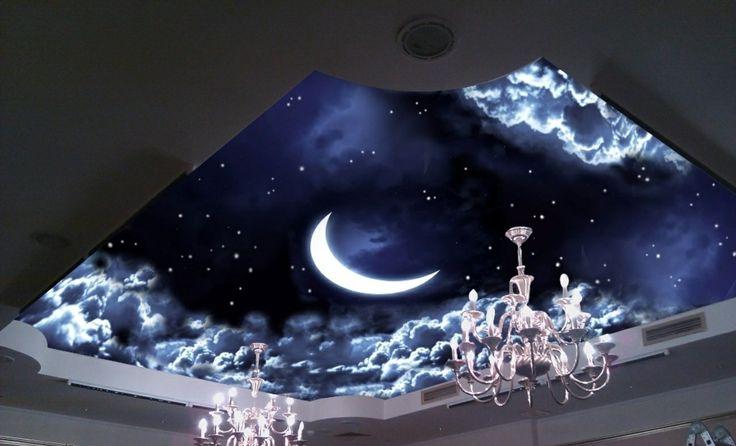 Techo tensado con el efecto de cielo estrellado mejor for Estilos de cielos falsos