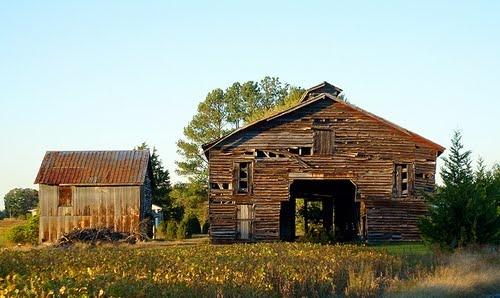 Old Barns, Alps - Caroline County, VA