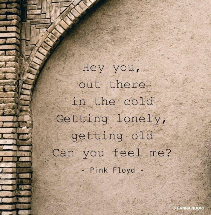 pink floyd-the best of the best!
