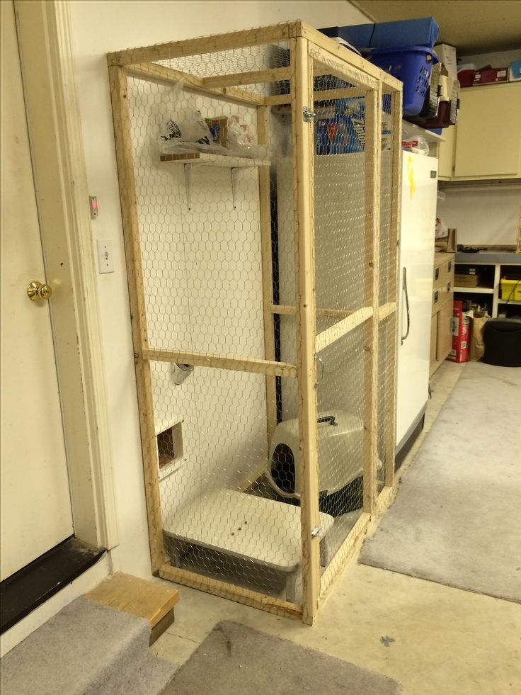 Litter box enclosure in the garage accessed by cat door in the wall. No more litter in my utility room! Sorry there's no tutorial. We used 2 x 2's and chicken wire and a lot staples.