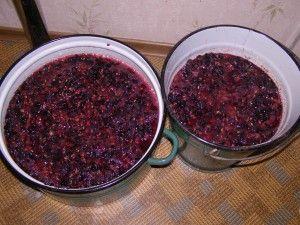 Вино-7