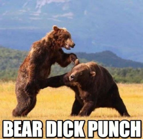 Punch him in the dick!