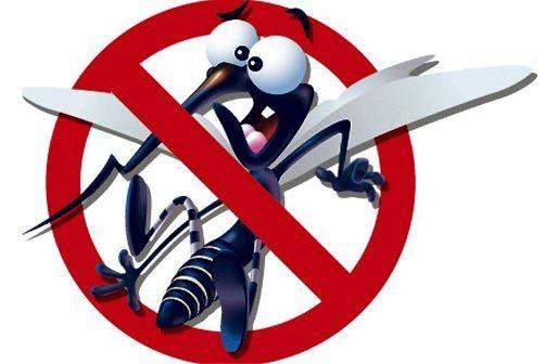 Informação e atividades sobre mosquito da Dengue trás uma série de explicações e atividades para os mais novos saberem o que precisam sobre esta doença.