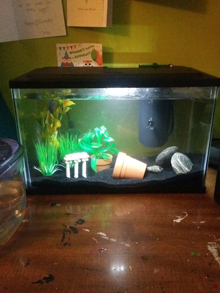 1000 ideas about aquarium sand on pinterest 10 gallon for Black sand fish tank