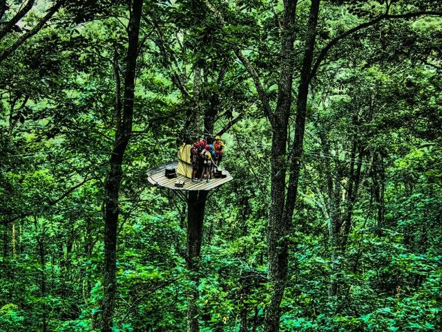 Navitat Zipline Adventure in Barnardsville, NC