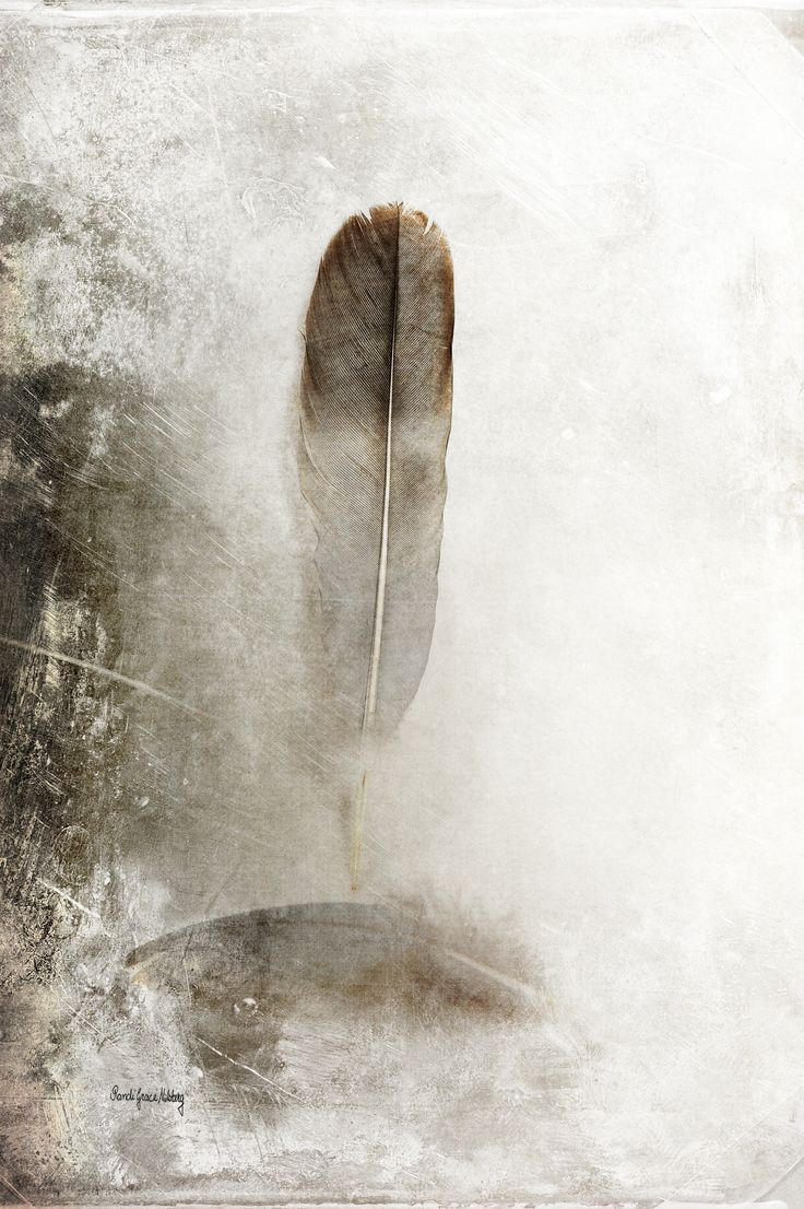 """""""Feathers in Balance""""    A big feather is balancing on top of a down feather. The word down comes from the Old Norse word dunn. The down feather is considered to be the """"simplest"""" of all feather types.    This photo is enhanced with textures and belongs to a series.    The photo is one in a series, but can definitely be a beautiful addition to any home, office or hospitality environment on its own. Contact me for more info about the whole series!    Signed and numbered fine art printed…"""