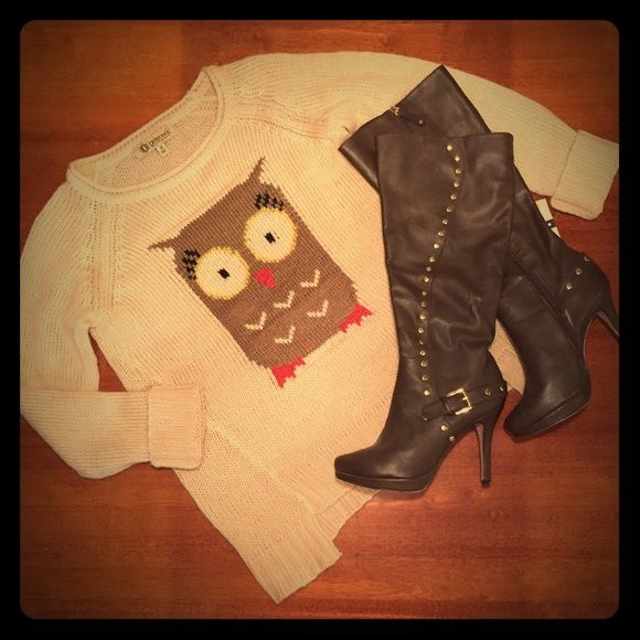 1 DAY SALE seriously cute owl sweater NWT NWT super cute owl sweater. A must have if you're into owls! Bundle and save! Sweaters Crew & Scoop Necks