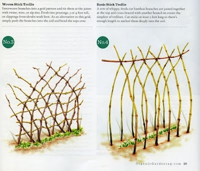 Simple instructions on creating lovely woven branch pea and bean trellises.