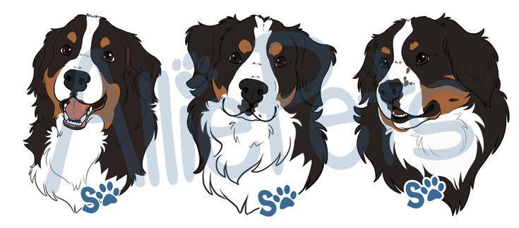 bernese mountain dog illustration - Поиск в Google