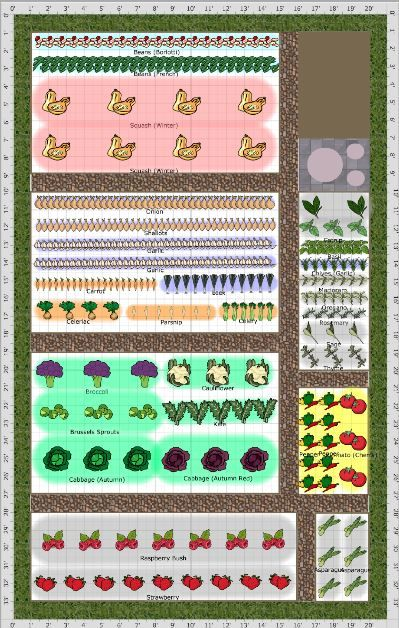 44 best veggie patch images on pinterest gardening for Veggie patch ideas
