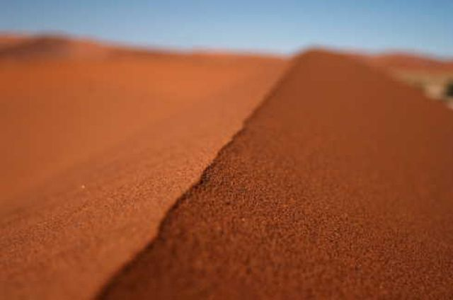 Image result for facts about the desert