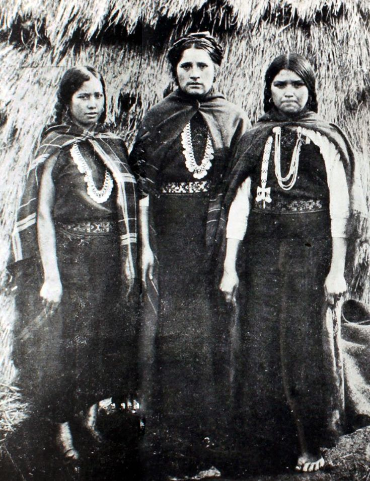 Mapuche Woman.  19th century |||  Source; http://issuu.com/bilbaopen/docs/153959196-carlos-aldunate-cultura-m