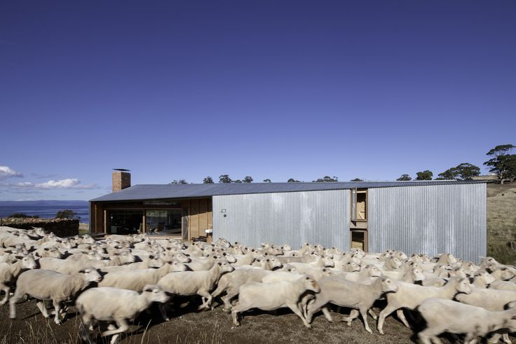 Gallery of Shearers Quarters House / John Wardle Architects - 1