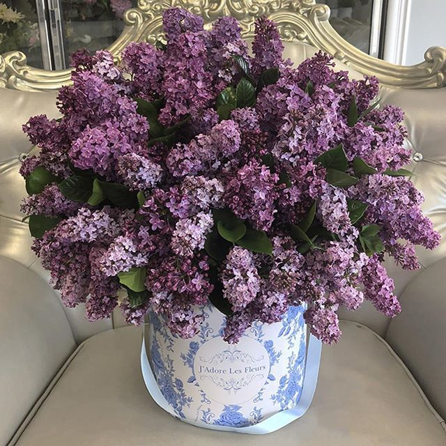 Whos In The Mood For Lilacs We Have Them Tap On The Image To Order Or Call Any Of Ou Flower Arrangements Fresh Flower Delivery Beautiful Flower Arrangements