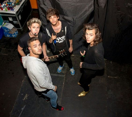 Roses are red, violets are blue, dear One Direction,its GOTTA BE YOUUUUUU!!!!