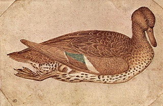 duck by pisanello