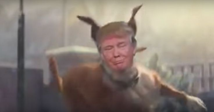 NEWLY-ELECTED US president Trump has been turned into Buster the boxer in this 38-second parody video.