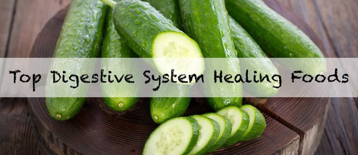 Poor digestive health is one of the biggest causes of dis-ease and sickness that manifests in the body. And...