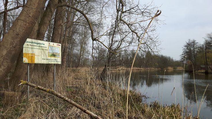 Superporno Schwaan(Mecklenburg-Western Pomerania)