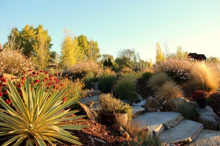 62 Best Xeriscaping Pacific Northwest Images On Pinterest