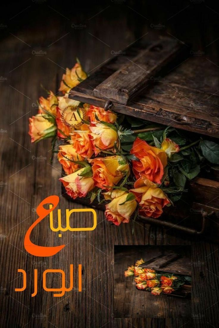 Pin By Ibrahim Iraq On صباح الخير Good Morning Arabic Good Morning Good Night Good Morning Images