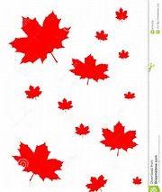 Image result for canadian maple leaf