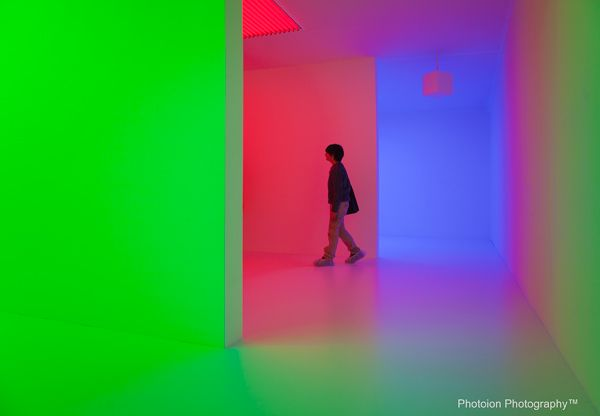 Image result for the light show london