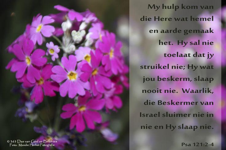 Bybelvers:  Psalm 121: 2-4 My hulp kom van die Here wat hemel en aarde gemaak het.  Hy sal nie toelaat dat jy struikel nie; Hy wat jou beskerm, slaap nooit nie. Waarlik, die Beskermer van Israel sluimer nie in nie en Hy slaap nie.