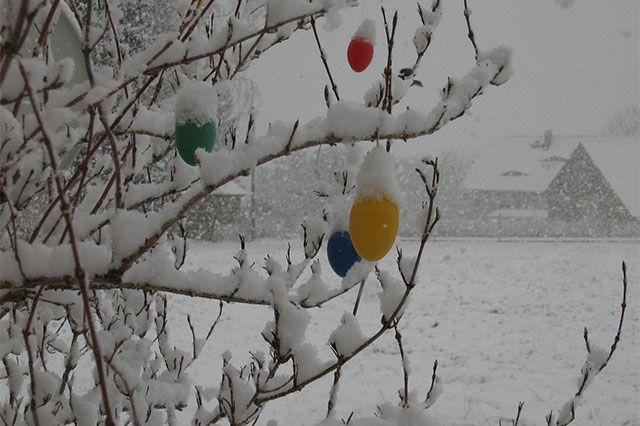 Schnee am Ostermontag Der Ostermontag ist in einigen Regionen im Süden und Osten richtig winterlich ausgefallen. Hier in Sohland an der Spree in Sachsen schneit es am Morgen kräftig. Bild: Steffen Miehrig