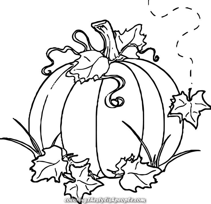 Lovely Autumn Pumpkin Coloring Totally Free Pumpkin Coloring Pages Pumpkin Drawing Fall Coloring Pages