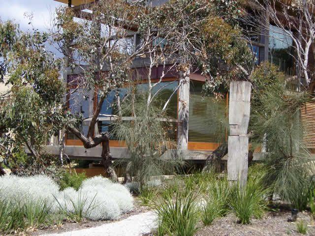 Native garden..