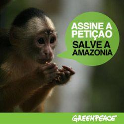 assine apetição salve a amazônia.