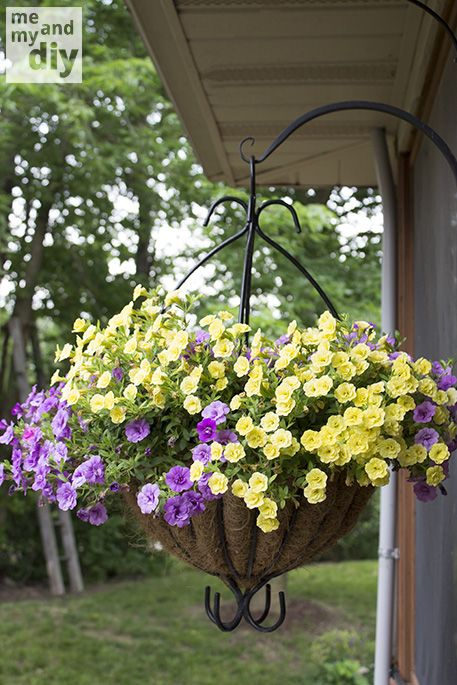 Me and My DIY:  Keep your hanging baskets and container plants beautiful all summer long, even on vacation