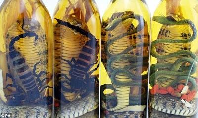 Minuman Tonik (Obat Kuat) Aneh Arak Vietnam Minuman Tonik (Obat Kuat) Aneh Arak Vietnam  Tahukah anda tentang obat kuat ramuan kuno di indonesia?,  di Negara kita ada minuman Tonik untuk pria yang terbuat dari anggur atau minuman alkohol  http://tipsehatcantikalami.blogspot.com/2012/10/obat.kuat.aneh.arak.vietnam.html