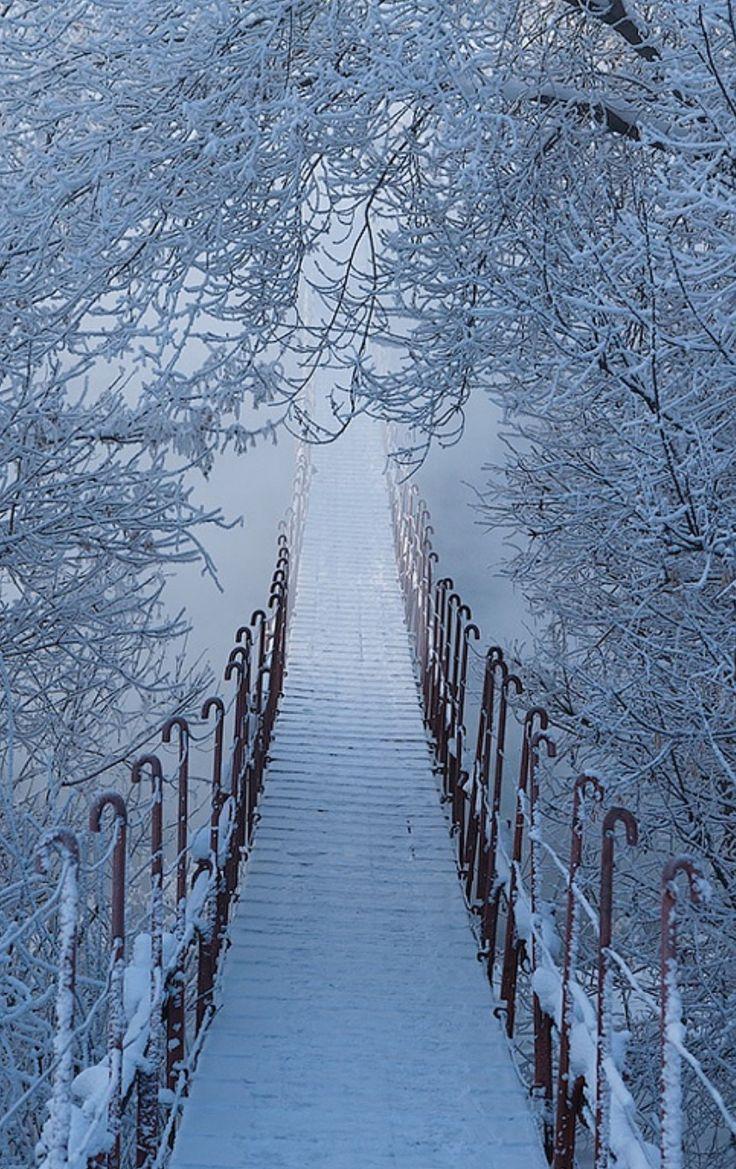 Яркие картинки зима отправилась