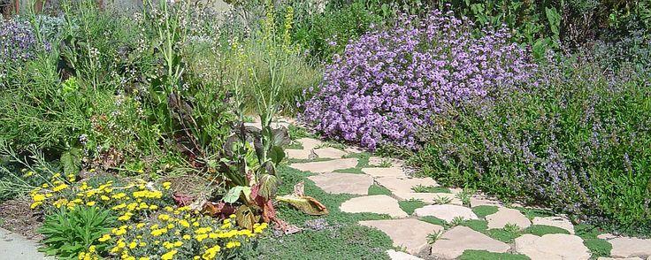 18 best farming worms images on pinterest garden compost for Garden design generator