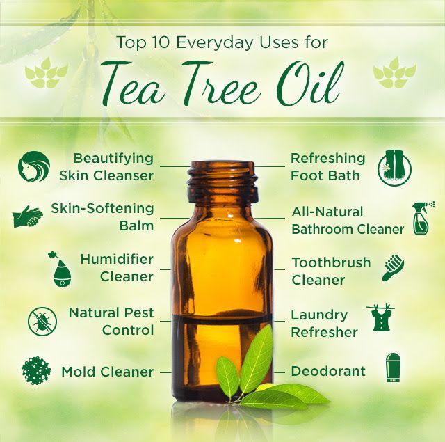 Tea Tree Oil Uses.  We love Tea Tree Oil!