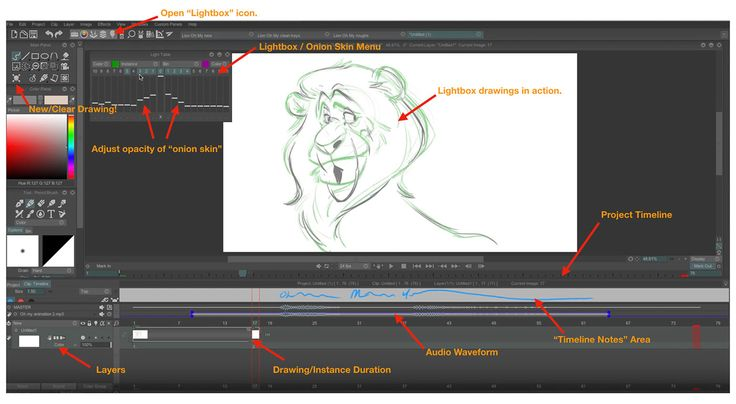 Oscar-nominated animation master Aaron Blaise offers tips and techniques for getting the most out of 2D animation software.