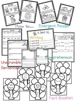 Plant Emergent Reader with Activities {Facts About Plants