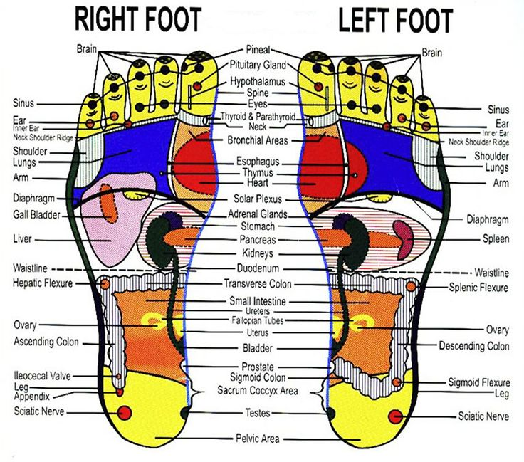Foot Reflexology Relax and enjoy the massaging, kneading, squeezing or pushing on parts of feet to stimulate the activity of our internal organs and to improve blood and lymph circulation
