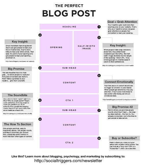 Content Marketing Infographic: How to Write the Perfect Blog Post