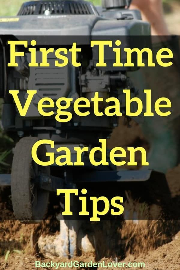 Are you planning your first time vegetable garden? Follow these quick tips to avoid overwhelm and have a successful garden this year! #garden #gardening #organic #gardener