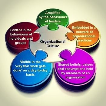 Organizational culture Source: thepillars.ca #culture #strategies #vision #plan #execute #belief #values #organization #visibility #identification #understanding #assessment #evaluation #respect #trust #growth #loyalty #productivity #viable #direction #vision #qualified #analysis